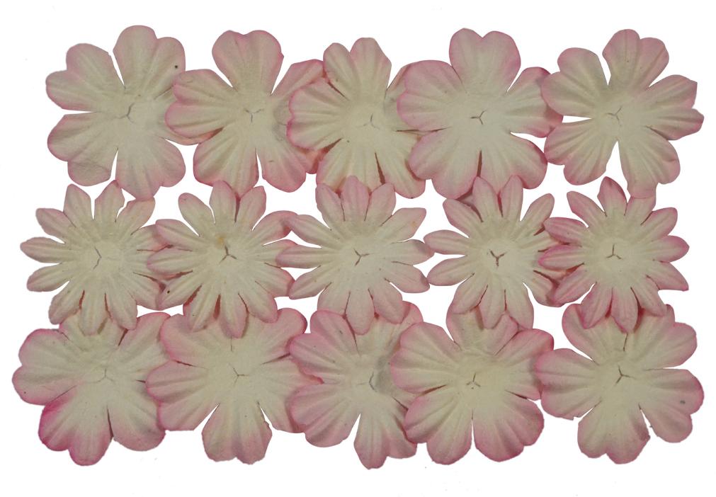 Набор декоративных листочков ScrapBerrys, цвет: бело-розовый, 20 шт694900_01 бело-розовыйТакой набор декоративных листочков станет любимым элементом декора в скрапбукинге. Назначение: украшение подарочных альбомов, блокнотов, шкатулок, конвертов, пригласительных открыток.В упаковке по 10 цветков каждого вида (всего 20 шт).