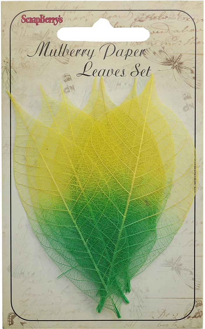Набор скелетированных цветов ScrapBerrys, цвет: желтый, зеленый, 9 х 4,7 см, 8 шт7715297Популярны при работе в техниках скрапбукинга и декупажа. Подойдут для украшения посуды, цветочных горшков, декоративных плафонов на светильники и др. Можно применять во флористике.Окрас листа: желто-зеленый деграде.Размер одного листка: 9х4,7 см.В наборе 8 шт.