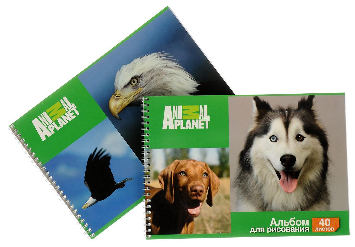 Action! Набор альбомов для рисования Орел и собаки 40 листов 2 шт альбом для рисования action animal planet на гребне 40 листов в ассортименте