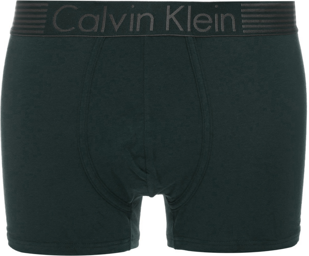 Трусы мужские Calvin Klein Underwear, цвет: зеленый. NB1017A_KNG. Размер M (48)NB1017A_KNG