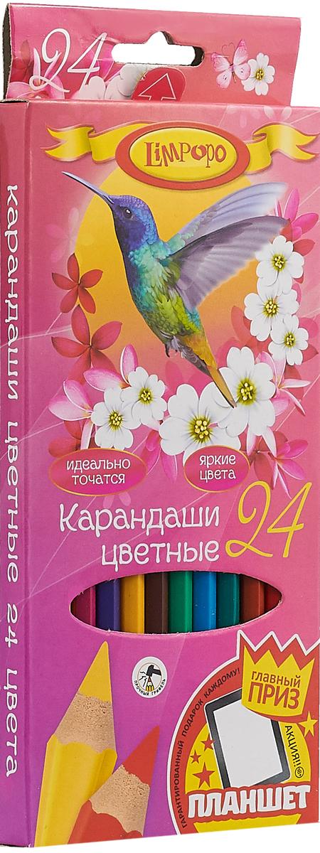 Limpopo Набор цветных карандашей Колибри 24 шт limpopo карандаши цветные super model 24 цвета