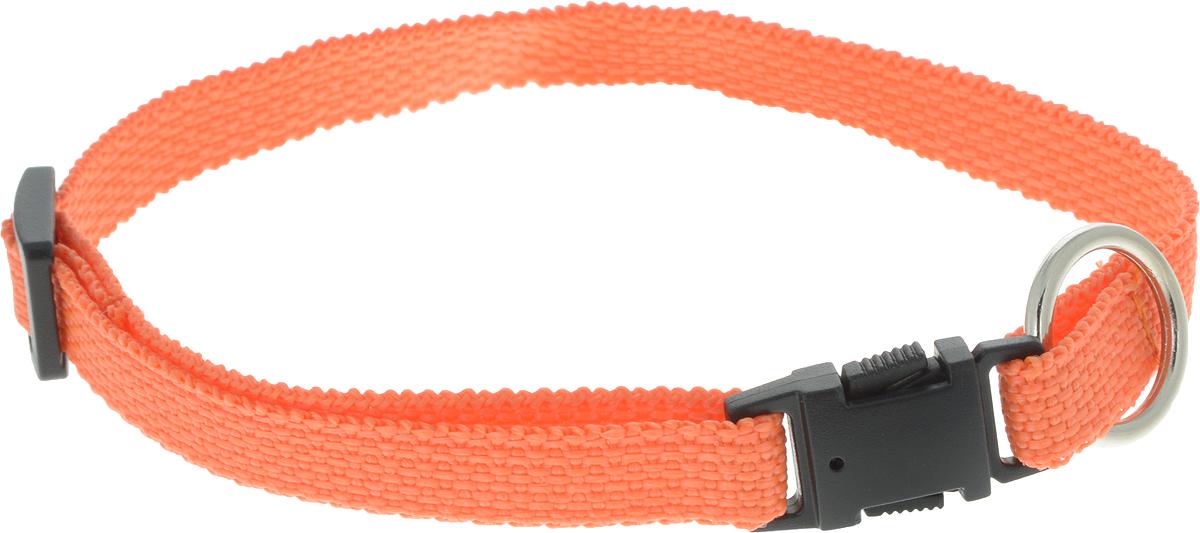 Ошейник для животных GLG Эконом, ростовой, цвет: оранжевый, ширина 1 см, обхват шеи 22-39 см фрукто овощерезка мультидом эконом цвет оранжевый