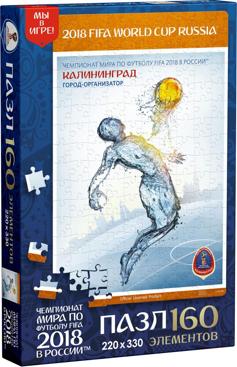 FIFA World Cup Russia 2018 Пазл Постеры Калининград 03839