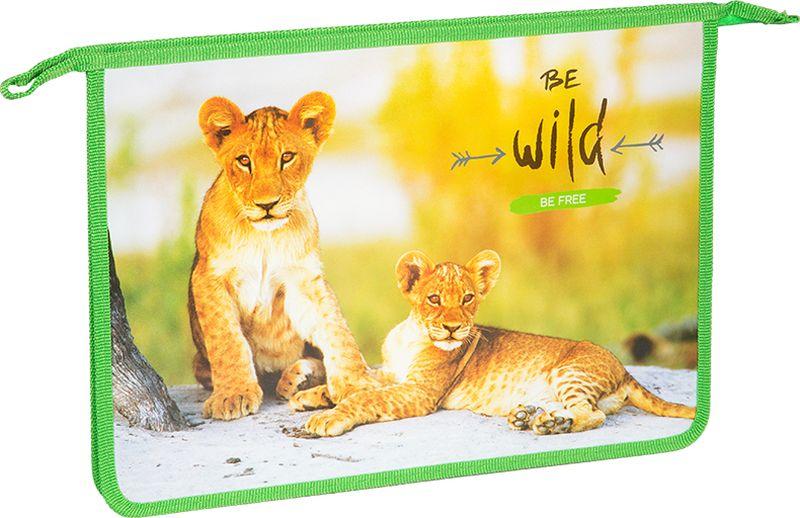ArtSpace Папка для тетрадей Дикие кошки А4 на молнии цвет зеленыйПТ-83_15550Папка для тетрадей. Папка представлена с дизайнами как для мальчиков, так и для девочек. Размер - 330*240 мм, формат А4, материал - пластик, застёжка-молния.