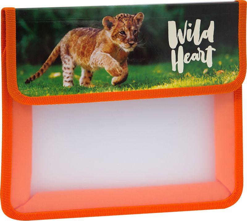 ArtSpace Папка для тетрадей Дикие кошки А5 на липучке цвет оранжевый