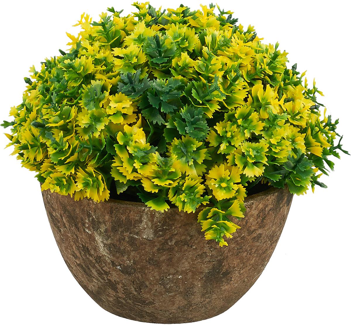 Композиция цветочная Engard Азалия, в кашпо, цвет: зеленый, 15 х 13,5 смB18зелИскусственные цветы Engard - это популярное дизайнерское решение для создания природного колорита и гармонии в пространстве. Декоративная азалия высотой 15 см выглядит аккуратно и довольно реалистично. Керамический горшок цвета эспрессо прекрасно впишется в любой интерьер.