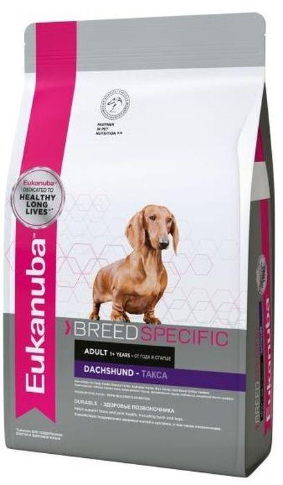 Корм сухой Eukanuba для таксы, 2,5 кг10147275EUK Dog DNA корм для таксы - полноценный сбалансированный корм, специально разработанный для взрослых собак породы такса, а также подходящий для кормления собак породы вельш корги, малого вандейского бассет-гриффона и денди-даймонд терьера. Основным компонентом корма является мясо. Содержит минералы для здоровья зубов, L-карнитин для естественного сжигания жира, глюкозамин и хондроитина сульфат для здоровья суставов, витамин Е, умеренно ферментируемую клетчатку (пульпа сахарной свеклы), способствующую эффективному всасыванию питательных веществ, и оптимальный баланс жирных кислот Омега-6 и Омега-3, помогающих сохранить здоровые кожу и шерсть.В состав корма входит система защиты зубов 3 Denta Defence. Не содержит искусственных красителей и ароматизаторов. Содержит разрешенные ЕС антиоксиданты (токоферолы). Нормы кормления указаны на упаковке. У животного всегда должна быть свежая вода. Срок годности указан на упаковке. Хранить в сухом и прохладном месте. Анализ: Белок 25,0 %, Жир 16,0 %, Минеральные вещества 7 %, Клетчатка пищевая 2,1 %, дегидрированные белки животного происхождения (птица), пшеница, ячмень, животные жиры, рис, пшеничная мука, растительная клетчатка, минеральные вещества, гидролизат белков животного происхождения (вкусоароматические добавки), яичный порошок, рыбий жир, фруктоолигосахариды, гидролизат из панциря ракообразных (источник глюкозамина), гидролизат из хряща (источник хондроитина). Добавки (в 1 кг):Питательные добавки: витамин A 17500 МЕ, витамин D3 1100 МЕ, железо 42 мг, йод 4,2 мг, медь 13 мг, марганец 55 мг, цинк 164 мг, селен 0,1 мг, консерванты, антиокислители. Корм Eukanuba Adult Dog разработан в соответствии с требованиями AAFCO к содержанию питательных веществ в корме для собак для поддержания их роста и развития. Индивидуальная непереносимость.Нормы кормления: 20 кг - 210-230 г, 25 кг - 240-270 г, 30 кг - 275-305 г, 35 кг - 305-335 г, 40 кг - 330-370 г, 45 кг - 360-400 г.