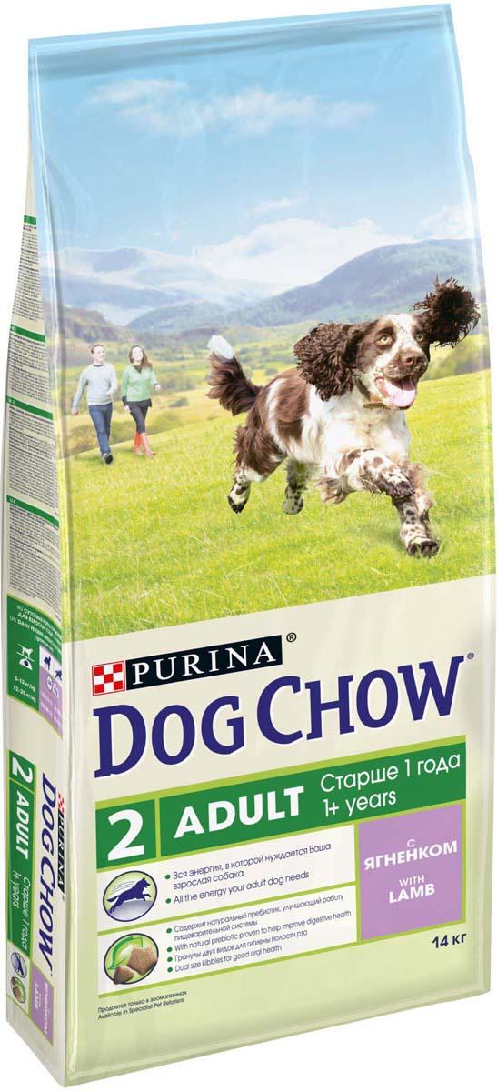 Корм сухой Dog Chow Adult для взрослых собак, с ягненком, 14 кг12260323Корм сухой Dog Chow Adult - полнорационный корм для взрослых собак старше 1 года с ягненком. Рецептура кормов Dog Chow составлена таким образом, чтобы ваша взрослая собака получала необходимое количество питательных веществ, для удовлетворения своих энергетических потребностей. Содержит натуральный пребиотик, улучшающий работу пищеварительной системы. В состав корма входит цикорий - источник натурального пребиотика, который способствует росту численности полезных кишечных бактерий и нормализации деятельности пищеварительной системы. Гранулы двух видов для гигиены полости рта. Специальная форма и текстура гранул способствует легкому пережевыванию и поддержанию здоровья полости рта. Наши диетологи и заводчики тщательно протестировали это сочетание гранул для гарантии того, что они подходят и нравятся взрослым собакам различных пород. Добавление витаминов группы В способствует равномерному высвобождению энергии из белков и жиров пищи, что позволяет собаке сохранять выносливость более продолжительное время и дольше оставаться активной. Оптимальное содержание белка, чтобы обеспечить продолжающееся формирование крепкой мускулатуры у вашей активной взрослой собаки. Незаменимые минеральные элементы и витамины для сохранения прочности зубов и костей. Состав: злаки, мясо и продукты переработки мяса (8%), продукты переработки сырья растительного происхождения, масла и жиры, экстракт растительного белка, овощи (сухой корень цикория), минеральные вещества, витамины. Добавленные вещества (на 1 кг): витамин А 21000 МЕ; витамин D3 1200 МЕ, витамин Е 100 МЕ, витамины группы В 83,5 мг, железо 87,2 мг, йод 2,2 мг, медь 9,7 мг, марганец 6,6 мг, цинк 157,2 мг, селен 0,21 мг. Гарантируемые показатели: белок 25%, жир 12%, сырая зола 8%, сырая клетчатка 3%.Вес: 14 кг.Товар сертифицирован.