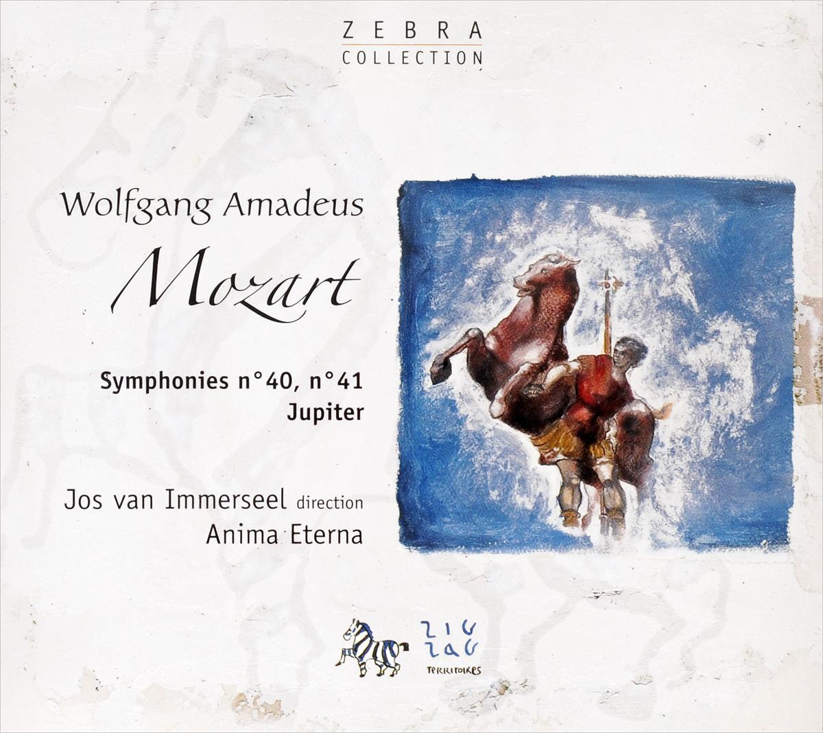 W.a. Mozart. Symphony No.40-41 zig zag woven makeup bag
