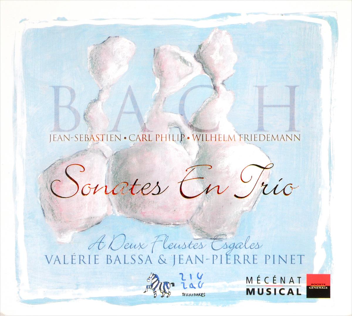 Bach Family. Sonates En Trio zig zag woven makeup bag