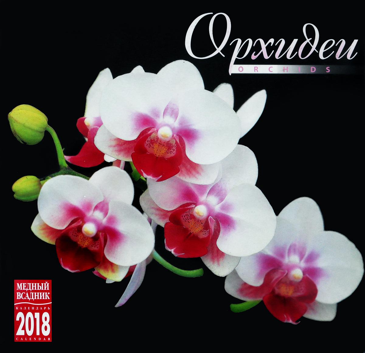 Орхидеи. Календарь на скрепке на 2018 год календарь 2018 на скрепке золотое кольцо