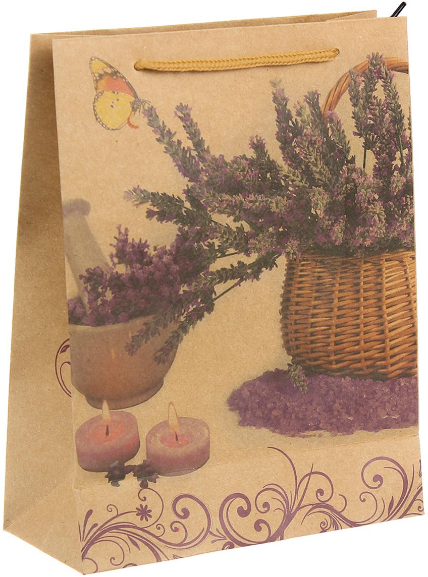 Пакет подарочный Букет из лаванды, цвет: мультиколор, 11,5 х 14 х 6 см. 24510472451047Любой подарок начинается с упаковки. Что может быть трогательнее и волшебнее, чем ритуал разворачивания полученного презента. И именно оригинальная, со вкусом выбранная упаковка выделит ваш подарок из массы других. Она продемонстрирует самые теплые чувства к виновнику торжества и создаст сказочную атмосферу праздника. Пакет-крафт Букет из лаванды - это то, что вы искали.