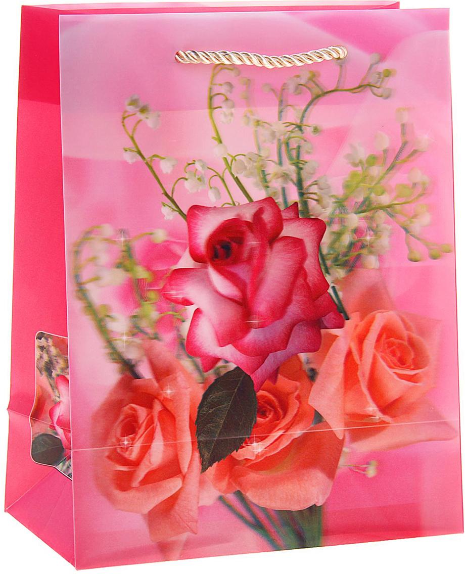 Пакет подарочный Букет роз, 3D рисунок, цвет: розовый, 8 х 18 х 23 см. 822826822826Любой подарок начинается с упаковки. Что может быть трогательнее и волшебнее, чем ритуал разворачивания полученного презента. И именно оригинальная, со вкусом выбранная упаковка выделит ваш подарок из массы других. Она продемонстрирует самые теплые чувства к виновнику торжества и создаст сказочную атмосферу праздника. Пакет пластиковый, 3D рисунок Букет роз - это то, что вы искали.
