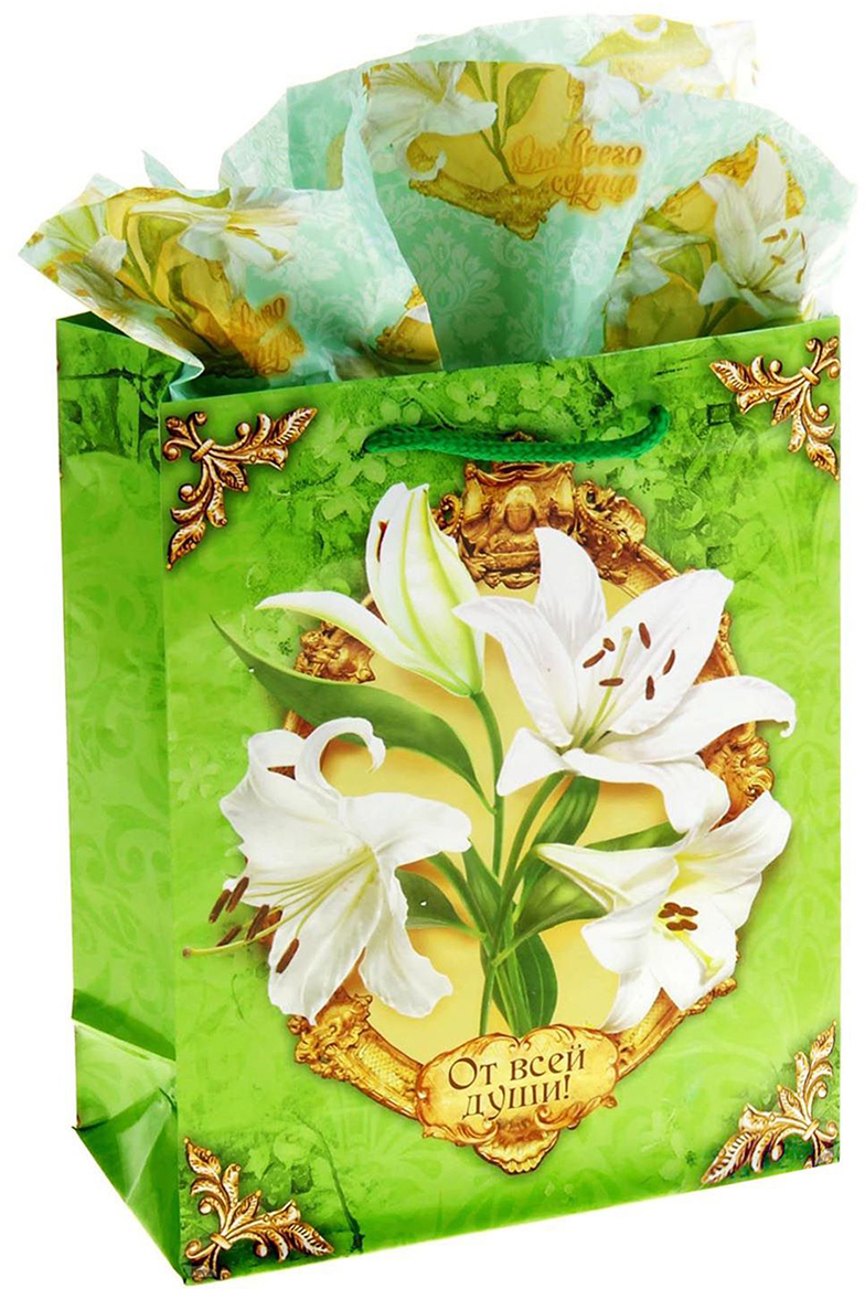 Набор для упаковки подарка 2 в 1: пакет + бумага-тишью.  Зачем нужна бумага тишью и как ею пользоваться?  Бумага тишью (tissuepaper) - это тонкая декоративная бумага, которая используется для упаковки  подарков. А еще с ее помощью в коробке или пакете с презентом заполняется пустое  пространство, при этом создается эффект дополнительного объема и пышности.  Бумага тишью немного сминается в процессе, но пугаться этого не стоит: так и задумано.  Презентабельность она при этом не теряет. Наоборот, за счет этого свойства бумаги можно  легко и быстро упаковать подарки любой, даже самой сложной формы, от одежды до  канцтоваров.  Кстати, эту бумагу очень любят мастера скрапбукинга, декупажа и те, кто занимается  декором интерьеров: из материала получаются неповторимые поделки.  Бумага тишью с ярким принтом - дарим идеальные подарки! Оригинальный принт, удобный размер, достойное качество и разумная цена изделия позволят  оформить презент красиво и со вкусом.  Подарки, приготовленные с душой, никогда не забываются.  Дарите радость близким!