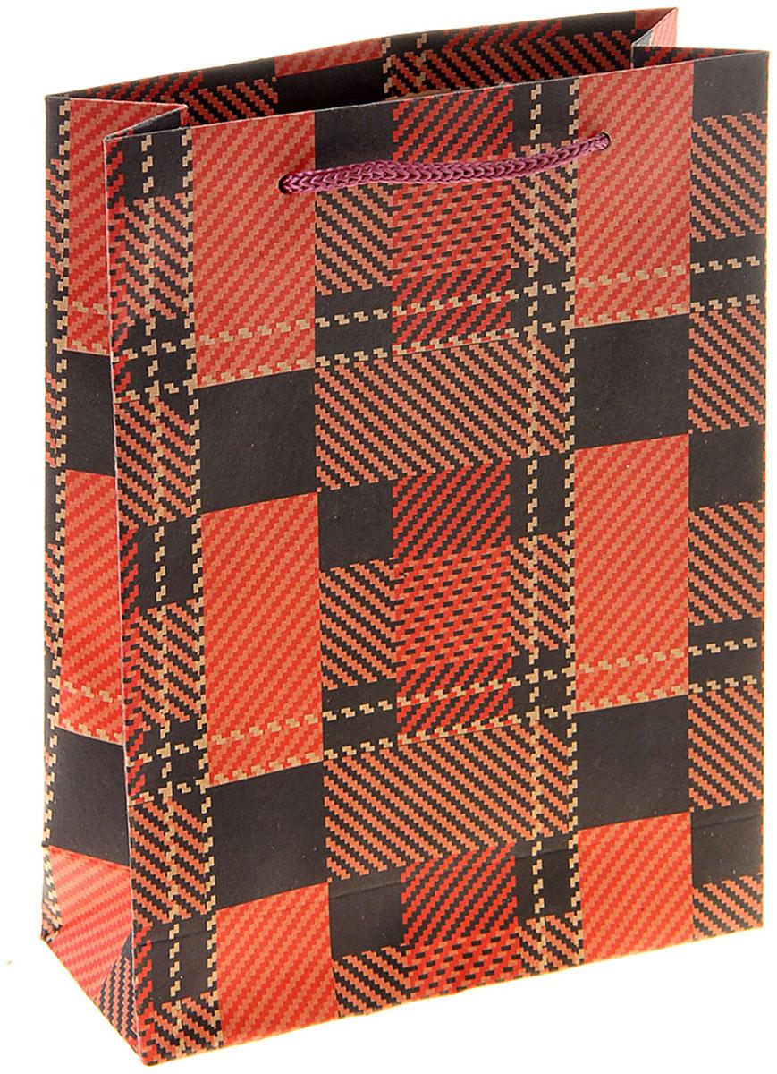 Пакет подарочный Геометрия, цвет: красный, 15 х 6 х 20 см. 10243161024316Любой подарок начинается с упаковки. Что может быть трогательнее и волшебнее, чем ритуал разворачивания полученного презента. И именно оригинальная, со вкусом выбранная упаковка выделит ваш подарок из массы других. Она продемонстрирует самые теплые чувства к виновнику торжества и создаст сказочную атмосферу праздника. Пакет-крафт Геометрия - это то, что вы искали.