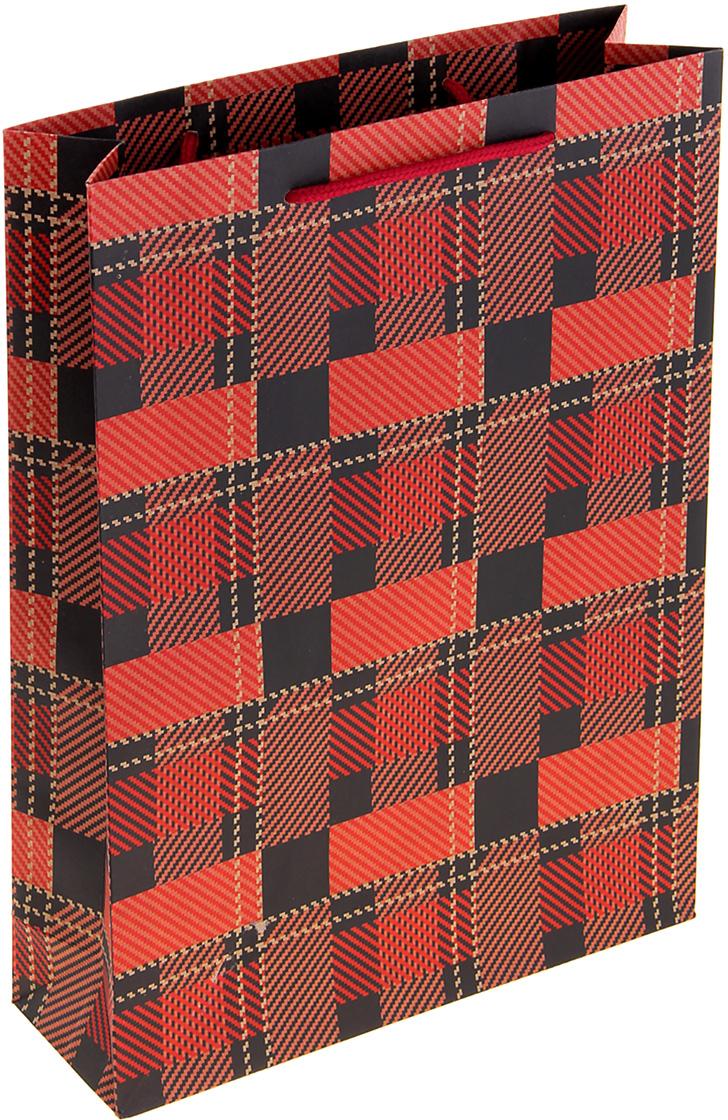 Пакет подарочный Геометрия, цвет: красный, 9 х 27 х 36 см. 10243461024346Крафт-пакет Геометрия из натуральной бумаги отличается высокой воздухопроницаемостью, имеет крепкое дно и крученые ручки. Также он свободно выдерживает относительно большой вес (до 10 кг), демонстрируя отличные показатели прочности, и не рвется острыми углами подарочной коробки. Практичность в использовании и разумная стоимость - все это характеризует удобную и абсолютно безопасную в применении упаковку. Модный сдержанный принт подойдет и для дорогой покупки из бутика, и для повседневных бытовых целей. Фирмы, упаковывающие свою продукцию таким образом, демонстрируют осведомленность в вопросах экологии, качества выпускаемых изделий и заботы о своих потребителях.
