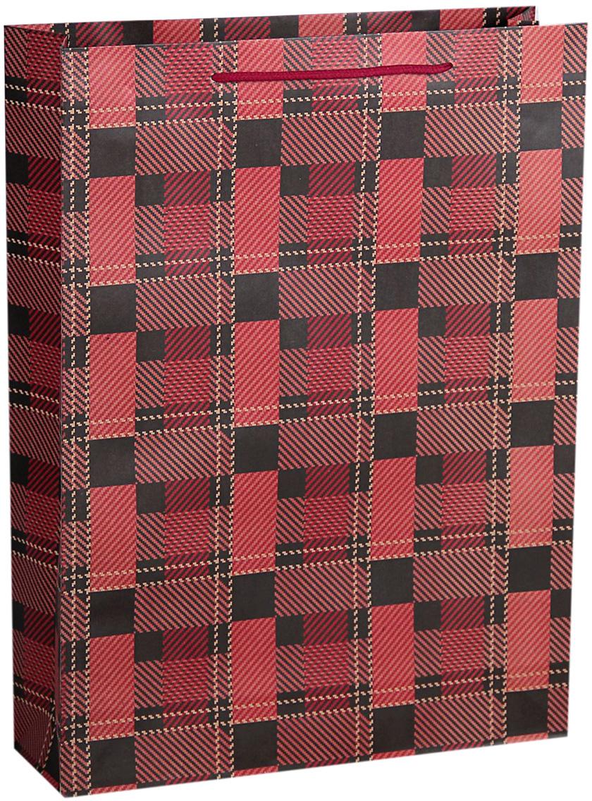 Пакет подарочный Геометрия, цвет: красный, 31 х 9,5 х 42 см. 10243561024356Любой подарок начинается с упаковки. Что может быть трогательнее и волшебнее, чем ритуал разворачивания полученного презента. И именно оригинальная, со вкусом выбранная упаковка выделит ваш подарок из массы других. Она продемонстрирует самые теплые чувства к виновнику торжества и создаст сказочную атмосферу праздника. Пакет-крафт Геометрия - это то, что вы искали.