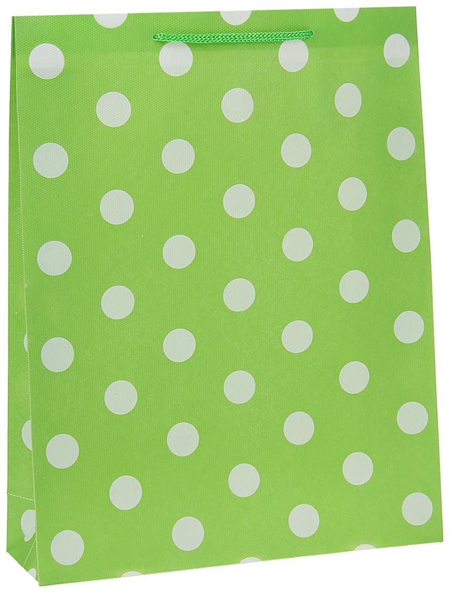 Пакет подарочный Горох, цвет: зеленый, 26 х 34 х 8 см. 15586811558681Любой подарок начинается с упаковки. Что может быть трогательнее и волшебнее, чем ритуал разворачивания полученного презента. И именно оригинальная, со вкусом выбранная упаковка выделит ваш подарок из массы других. Она продемонстрирует самые теплые чувства к виновнику торжества и создаст сказочную атмосферу праздника - это то, что вы искали.