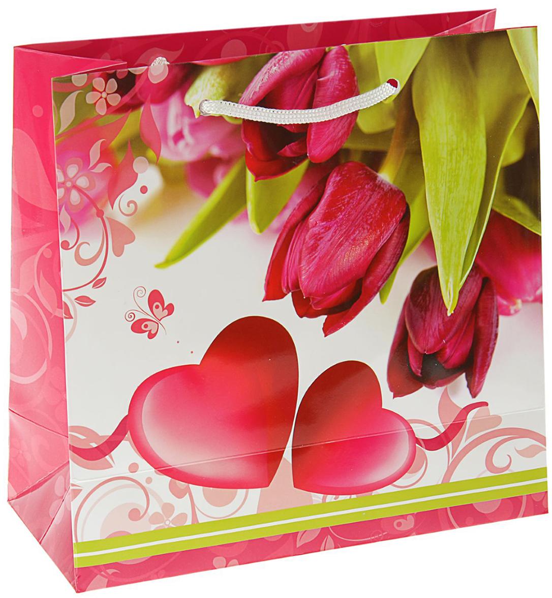 Пакет подарочный Влюбленный, цвет: мультиколор, 23 х 22,5 х 10 см. 2059220
