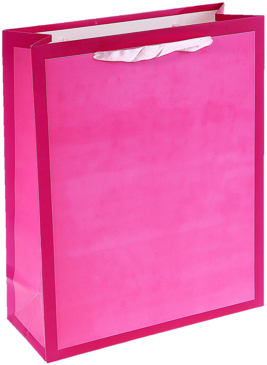 Пакет подарочный Рамка, цвет: розовый, 30 х 12 х 42 см. 10200491020049Любой подарок начинается с упаковки. Что может быть трогательнее и волшебнее, чем ритуал разворачивания полученного презента. И именно оригинальная, со вкусом выбранная упаковка выделит ваш подарок из массы других. Она продемонстрирует самые теплые чувства к виновнику торжества и создаст сказочную атмосферу праздника. Пакет ламинированный Рамка - это то, что вы искали.