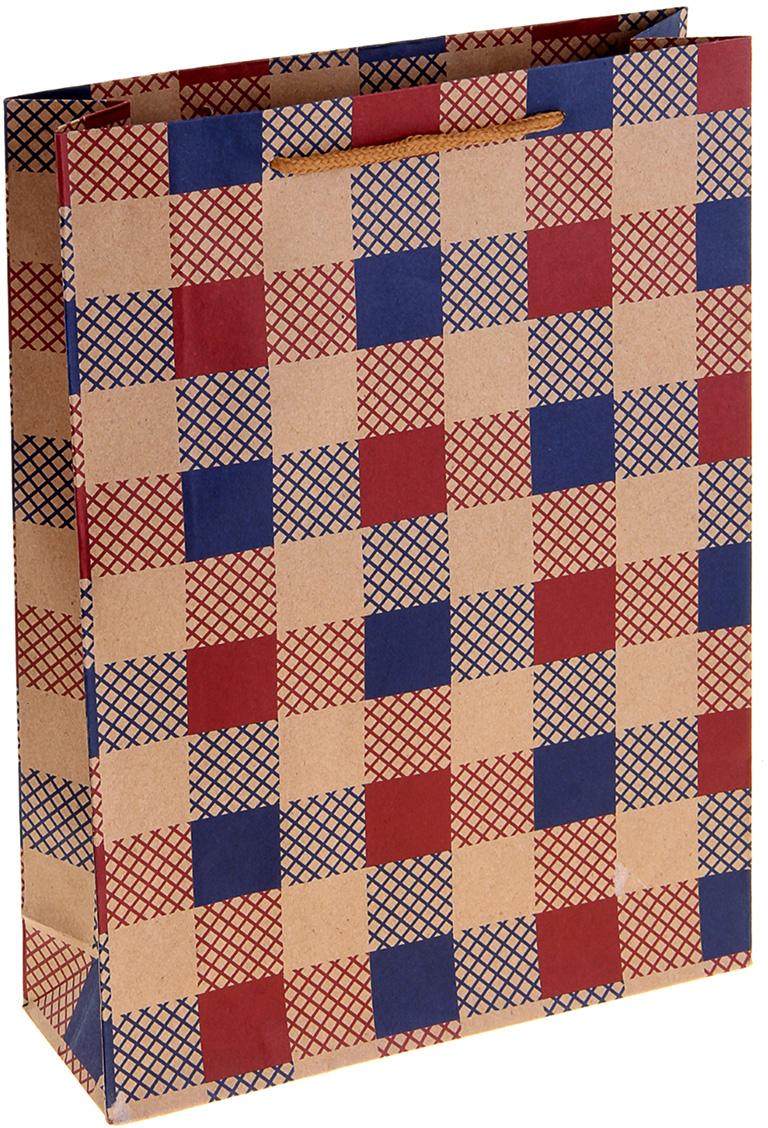 Пакет подарочный Клетка, цвет: мультиколор, 9 х 27 х 36 см. 10243451024345Крафт-пакет Клетка из натуральной бумаги отличается высокой воздухопроницаемостью, имеет крепкое дно и крученые ручки. Также он свободно выдерживает относительно большой вес (до 10 кг), демонстрируя отличные показатели прочности, и не рвется острыми углами подарочной коробки. Практичность в использовании и разумная стоимость - все это характеризует удобную и абсолютно безопасную в применении упаковку. Модный сдержанный принт подойдет и для дорогой покупки из бутика, и для повседневных бытовых целей. Фирмы, упаковывающие свою продукцию таким образом, демонстрируют осведомленность в вопросах экологии, качества выпускаемых изделий и заботы о своих потребителях.
