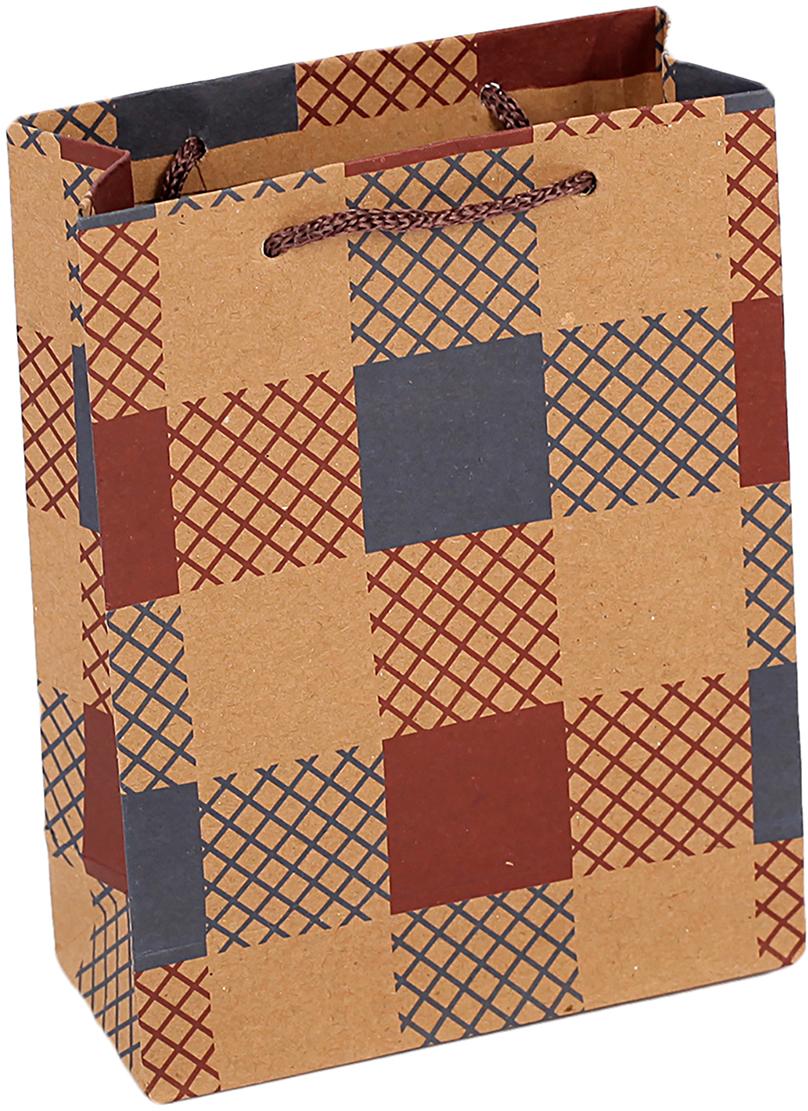 Пакет подарочный Клетка, цвет: мультиколор, 11 х 5,5 х 14,5 см. 26871772687177Любой подарок начинается с упаковки. Что может быть трогательнее и волшебнее, чем ритуал разворачивания полученного презента. И именно оригинальная, со вкусом выбранная упаковка выделит ваш подарок из массы других. Она продемонстрирует самые теплые чувства к виновнику торжества и создаст сказочную атмосферу праздника. Пакет-крафт Клетка - это то, что вы искали.