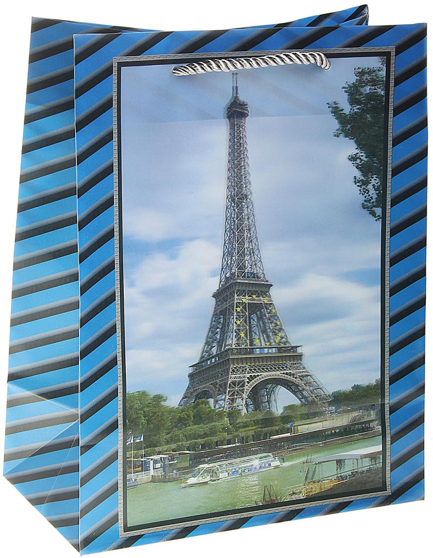Пакет подарочный Эйфелева башня, 3D рисунок, цвет: голубой, 10 х 18 х 23 см. 105561105561Любой подарок начинается с упаковки. Что может быть трогательнее и волшебнее, чем ритуал разворачивания полученного презента. И именно оригинальная, со вкусом выбранная упаковка выделит ваш подарок из массы других. Она продемонстрирует самые теплые чувства к виновнику торжества и создаст сказочную атмосферу праздника. Пакет пластиковый, 3D рисунок Эйфелева башня - это то, что вы искали.