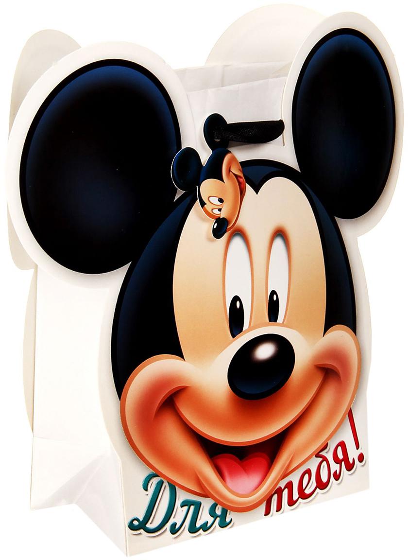 Пакет-открытка подарочный Disney Микки Маус. Для тебя, цвет: мультиколор, 19,1 х 8 х 17,5 см. 1123104 пакет подарочный disney микки маус и друзья с днем рождения цвет мультиколор 34 х 40 см 2333376