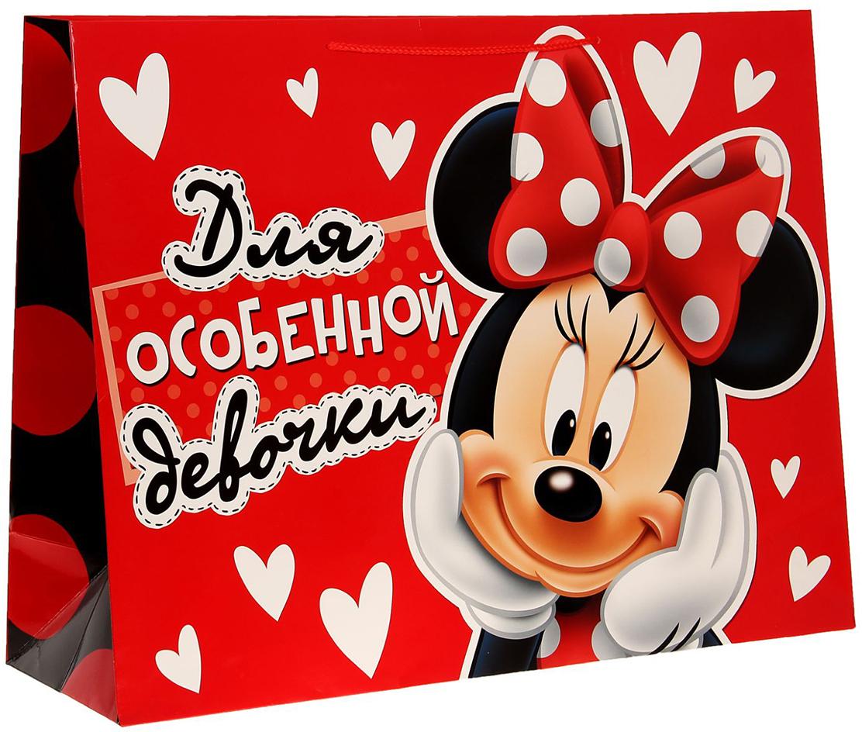 Пакет подарочный Disney Минни Маус. Для особенной девочки, цвет: мультиколор, 61 х 20 х 46 см. 11231371123137Подарки не обязательно делать только по важным поводам. Дарите их спонтанно, без причины, просто для души, ведь главное в этом процессе - удовольствие! А сколько радости получит адресат, когда увидит яркий ламинированный пакет с любимыми героями!Прочная ламинированная бумага с ручкой-шнуром и уникальный дизайн делают его идеальным. Положите в него конфеты или игрушки, и ваш подарок не затеряется среди других.