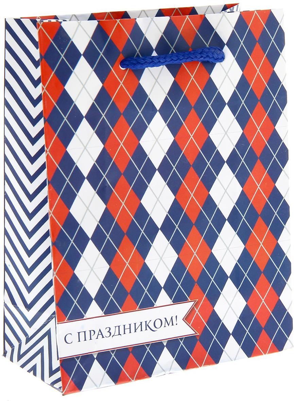 Пакет подарочный Дарите Счастье Российский, цвет: мультиколор, 11 х 5 х 14 см. 11489891148989Ламинированные бумажные пакеты - лидеры по популярности среди подарочной упаковки. Для этого есть несколько причин:Красота - ламинированные пакеты выглядят ярко и эффектно. Прочность - он способен выдержать до 10 кг. Надежность - благодаря качественной печати рисунок не сотрется и не выгорит. Широкий выбор ламинированных пакетов позволит найти упаковку для подарка для любого повода.