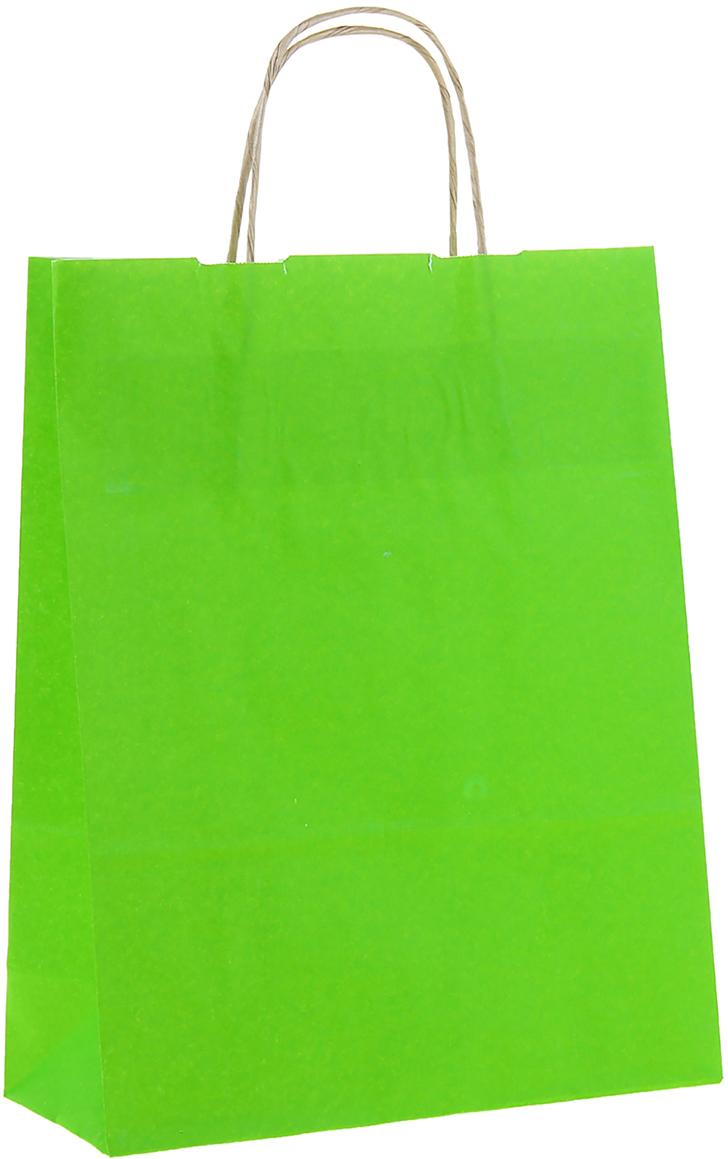 Пакет подарочный Радуга, цвет: травяной, 25 х 11 х 32 см. 11500141150014Крафт-пакет влагоустойчив, с хорошей воздухопроницаемостью, отменно переносит высокую температуру и может использоваться не одноразово. Имеет крепкое дно и крученые ручки. Изготовлен из крафт-бумаги - экологически чистого материала. Практичность в использовании и разумная стоимость - все это характеризует удобную и абсолютно безопасную в применении упаковку. Материал очень податлив, а работать с ним одно удовольствие: можно нанести любой рисунок, рекламу, поиграть с расцветкой или сделать яркий принт. Фирмы, упаковывающие свою продукцию таким образом, демонстрируют осведомленность в вопросах экологии, качестве выпускаемых изделий и заботу о ее потребителях.
