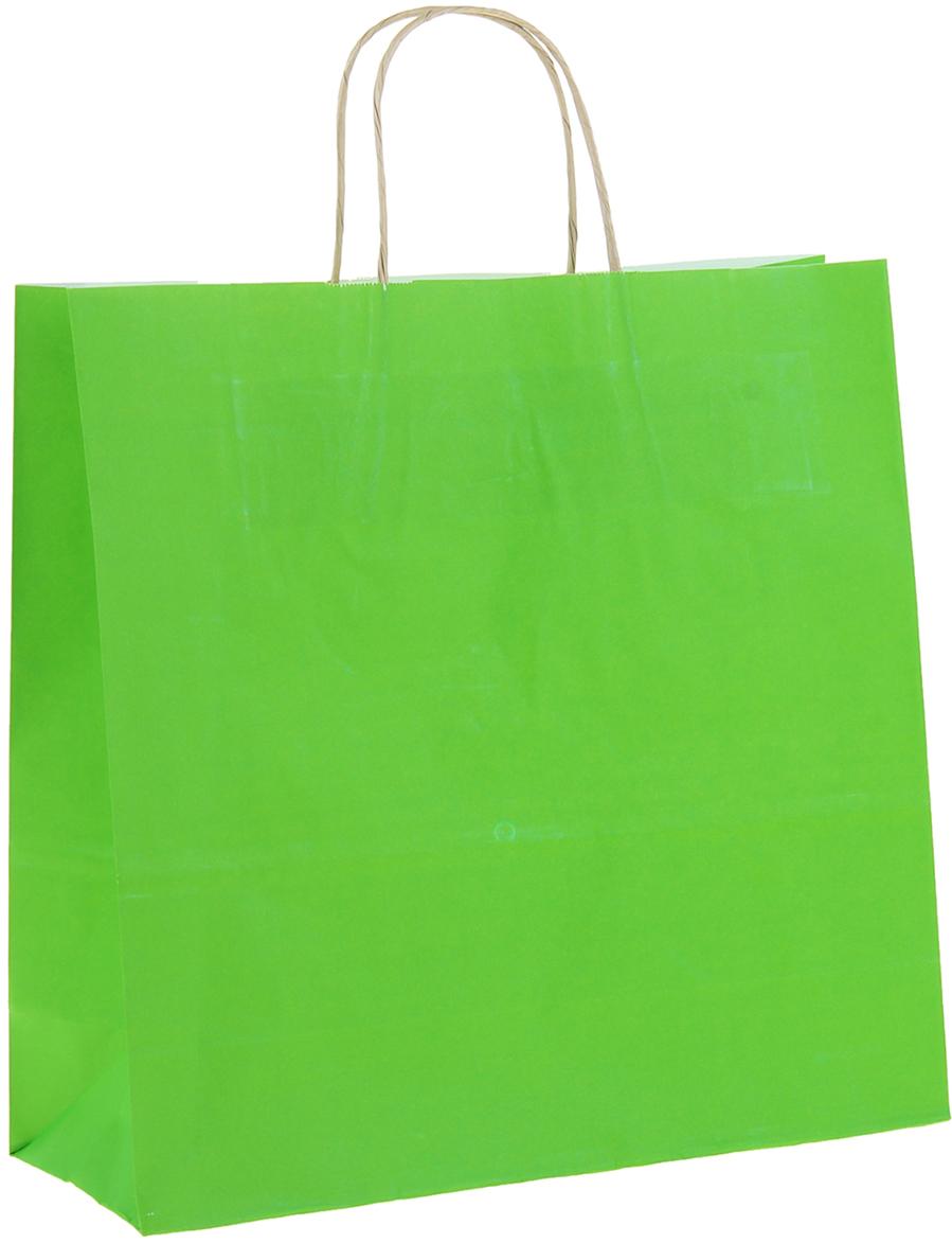 Пакет подарочный Радуга, цвет: травяной, 32 х 12 х 32 см. 11500191150019Крафт-пакет влагоустойчив, с хорошей воздухопроницаемостью, отменно переносит высокую температуру и может использоваться не одноразово. Имеет крепкое дно и крученые ручки. Изготовлен из крафт-бумаги - экологически чистого материала. Практичность в использовании и разумная стоимость - все это характеризует удобную и абсолютно безопасную в применении упаковку. Материал очень податлив, а работать с ним одно удовольствие: можно нанести любой рисунок, рекламу, поиграть с расцветкой или сделать яркий принт. Фирмы, упаковывающие свою продукцию таким образом, демонстрируют осведомленность в вопросах экологии, качестве выпускаемых изделий и заботу о ее потребителях.