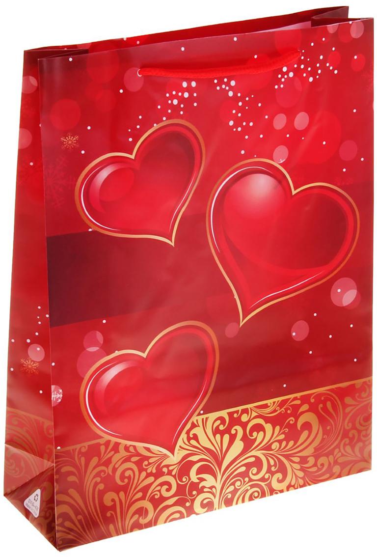 Пакет подарочный Сердца, цвет: красный, 18 х 7 х 24 см. 11506351150635Пакет пластиковый Сердца - самый удобный и практичный способ оформления подарков, сначала они радуют глаз в момент вручения презента, а потом их можно использовать для хранения различных мелочей. Изделие украшено оригинальным принтом определенной тематики. Например, вы с легкостью подберете пакет ко дню свадьбы, романтические пакеты про любовь, ну и, конечно же, к таким большим праздникам, как Новый год и Рождество.