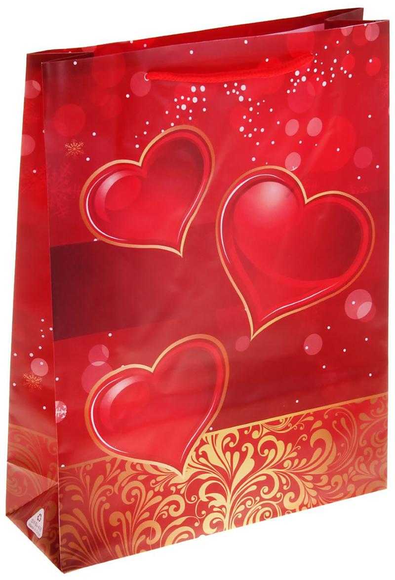 Пакет подарочный Сердца, цвет: красный, 31 х 9 х 39 см. 11506451150645Пакет пластиковый Сердца - самый удобный и практичный способ оформления подарков, сначала они радуют глаз в момент вручения презента, а потом их можно использовать для хранения различных мелочей. Изделие украшено оригинальным принтом определенной тематики. Например, вы с легкостью подберете пакет ко дню свадьбы, романтические пакеты про любовь, ну и, конечно же, к таким большим праздникам, как Новый год и Рождество.