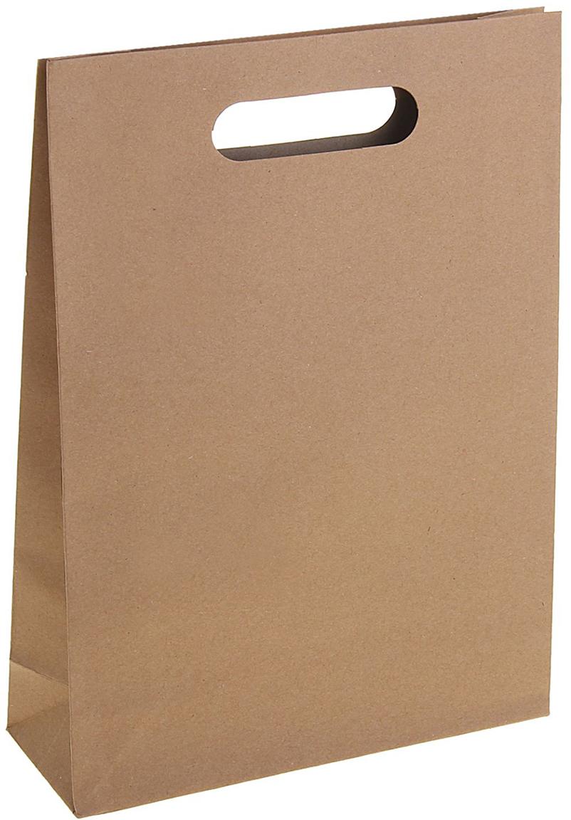 Пакет подарочный, цвет: коричневый, 28 х 37 х 10 см. 12551671255167Любой подарок начинается с упаковки. Что может быть трогательнее и волшебнее, чем ритуал разворачивания полученного презента. И именно оригинальная, со вкусом выбранная упаковка выделит ваш подарок из массы других. Она продемонстрирует самые теплые чувства к виновнику торжества и создаст сказочную атмосферу праздника. Пакет-крафт с вырубной ручкой - это то, что вы искали.