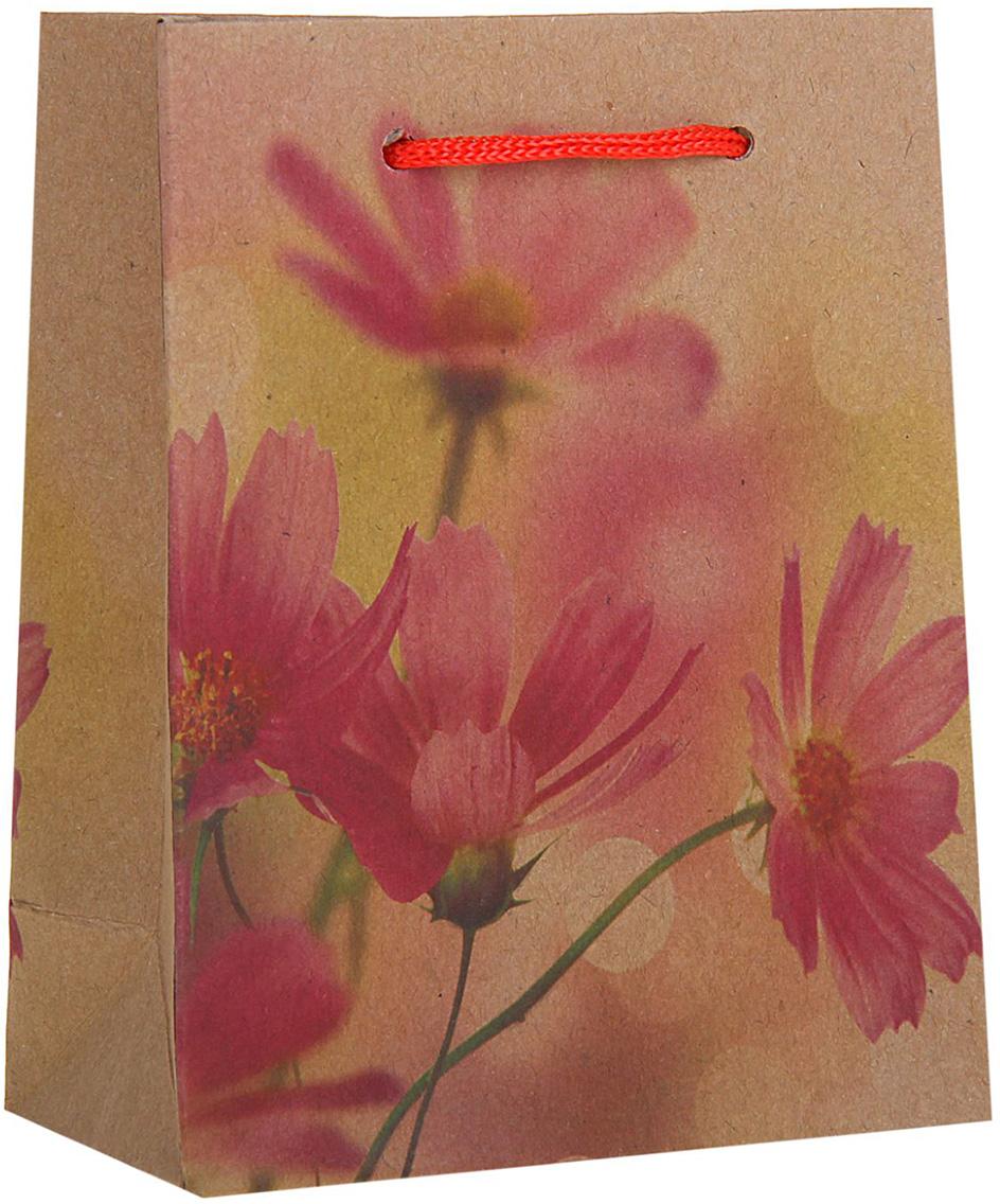Пакет подарочный Космея, цвет: мультиколор, 11 х 6 х 14 см. 1258384 пакет подарочный рисунок цвет мультиколор 11 х 6 х 14 см 1258394