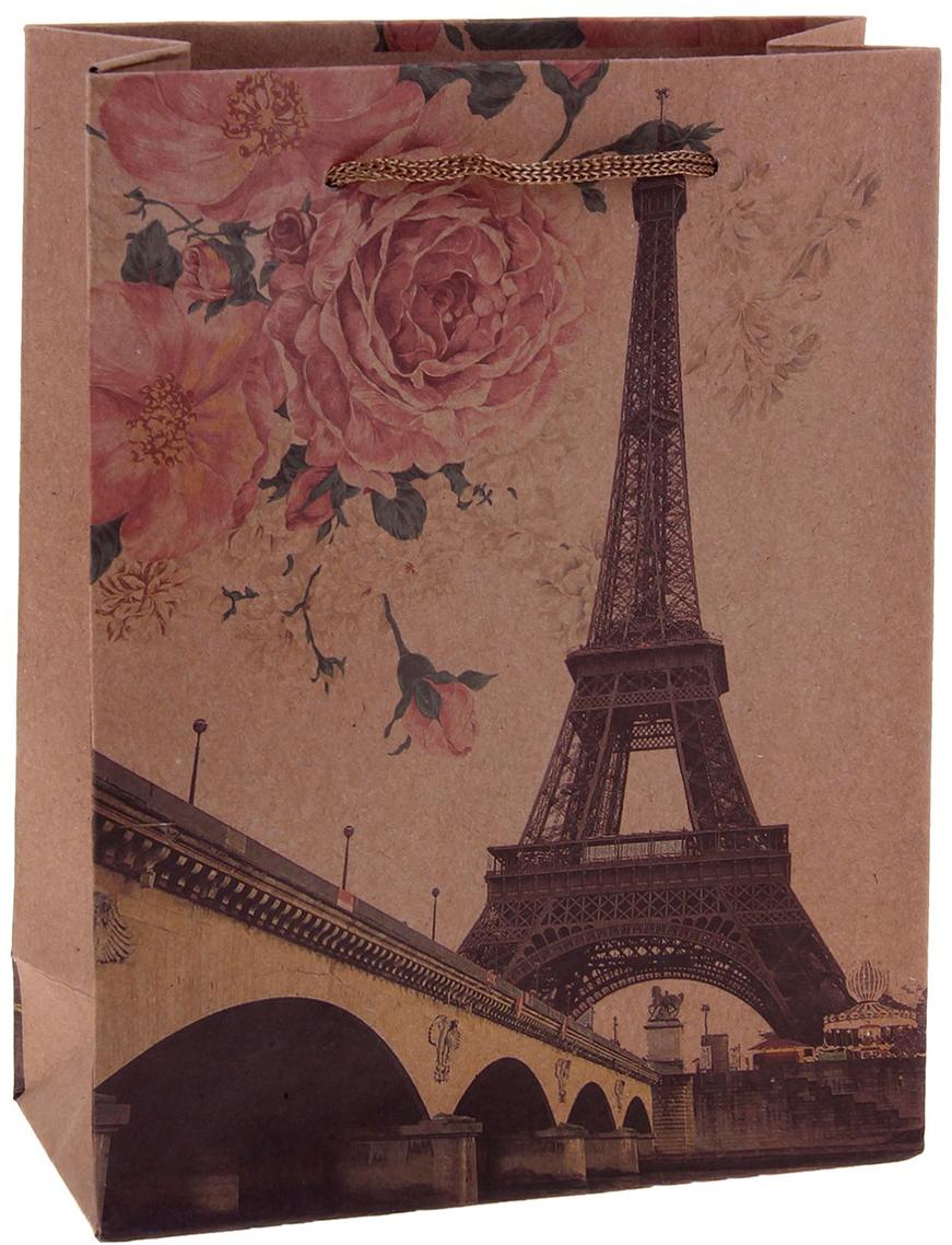 Пакет подарочный Эйфелева башня, цвет: коричневый, 15 х 6 х 20 см. 12584041258404Любой подарок начинается с упаковки. Что может быть трогательнее и волшебнее, чем ритуал разворачивания полученного презента. И именно оригинальная, со вкусом выбранная упаковка выделит ваш подарок из массы других. Она продемонстрирует самые теплые чувства к виновнику торжества и создаст сказочную атмосферу праздника. Пакет-крафт Эйфелева башня - это то, что вы искали.