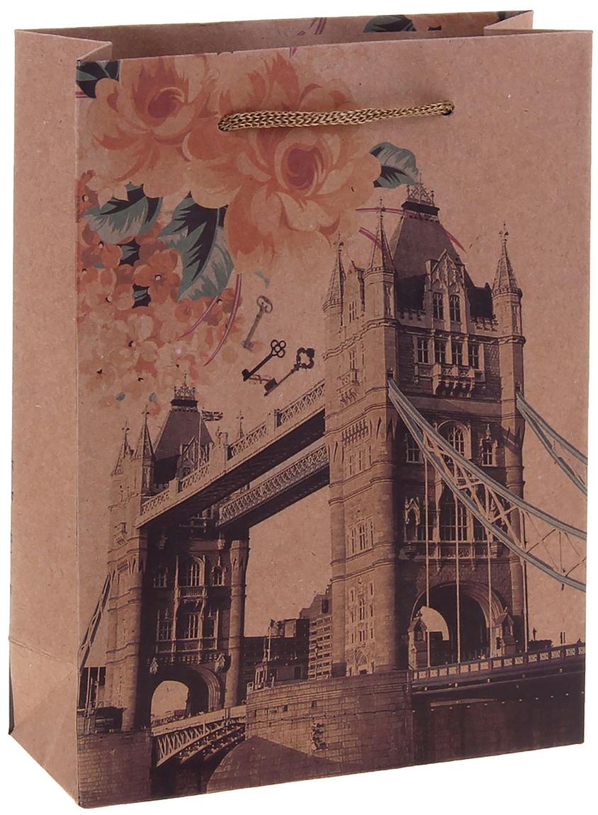 Пакет подарочный Лондон, цвет: коричневый, 15 х 6 х 20 см. 12584051258405Любой подарок начинается с упаковки. Что может быть трогательнее и волшебнее, чем ритуал разворачивания полученного презента. И именно оригинальная, со вкусом выбранная упаковка выделит ваш подарок из массы других. Она продемонстрирует самые теплые чувства к виновнику торжества и создаст сказочную атмосферу праздника. Пакет-крафт Лондон - это то, что вы искали.