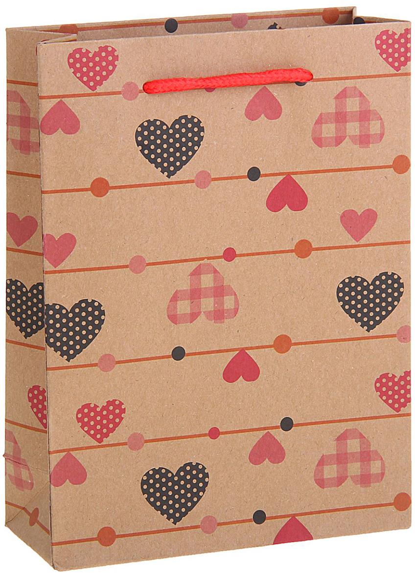 Пакет подарочный Сердечки, цвет: коричневый, 15 х 6 х 20 см. 12584141258414Любой подарок начинается с упаковки. Что может быть трогательнее и волшебнее, чем ритуал разворачивания полученного презента. И именно оригинальная, со вкусом выбранная упаковка выделит ваш подарок из массы других. Она продемонстрирует самые теплые чувства к виновнику торжества и создаст сказочную атмосферу праздника. Пакет-крафт Сердечки - это то, что вы искали.