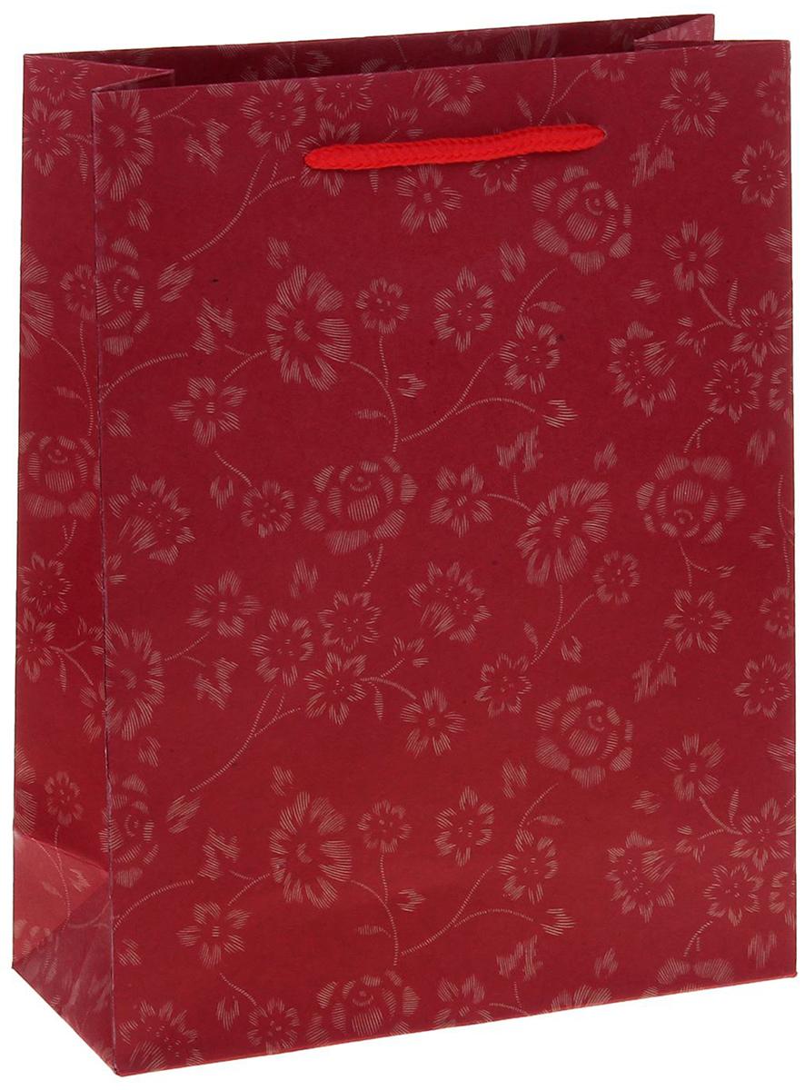 Пакет подарочный Узор, цвет: красный, 15 х 6 х 20 см. 12584211258421Любой подарок начинается с упаковки. Что может быть трогательнее и волшебнее, чем ритуал разворачивания полученного презента. И именно оригинальная, со вкусом выбранная упаковка выделит ваш подарок из массы других. Она продемонстрирует самые теплые чувства к виновнику торжества и создаст сказочную атмосферу праздника. Пакет-крафт Узор - это то, что вы искали.