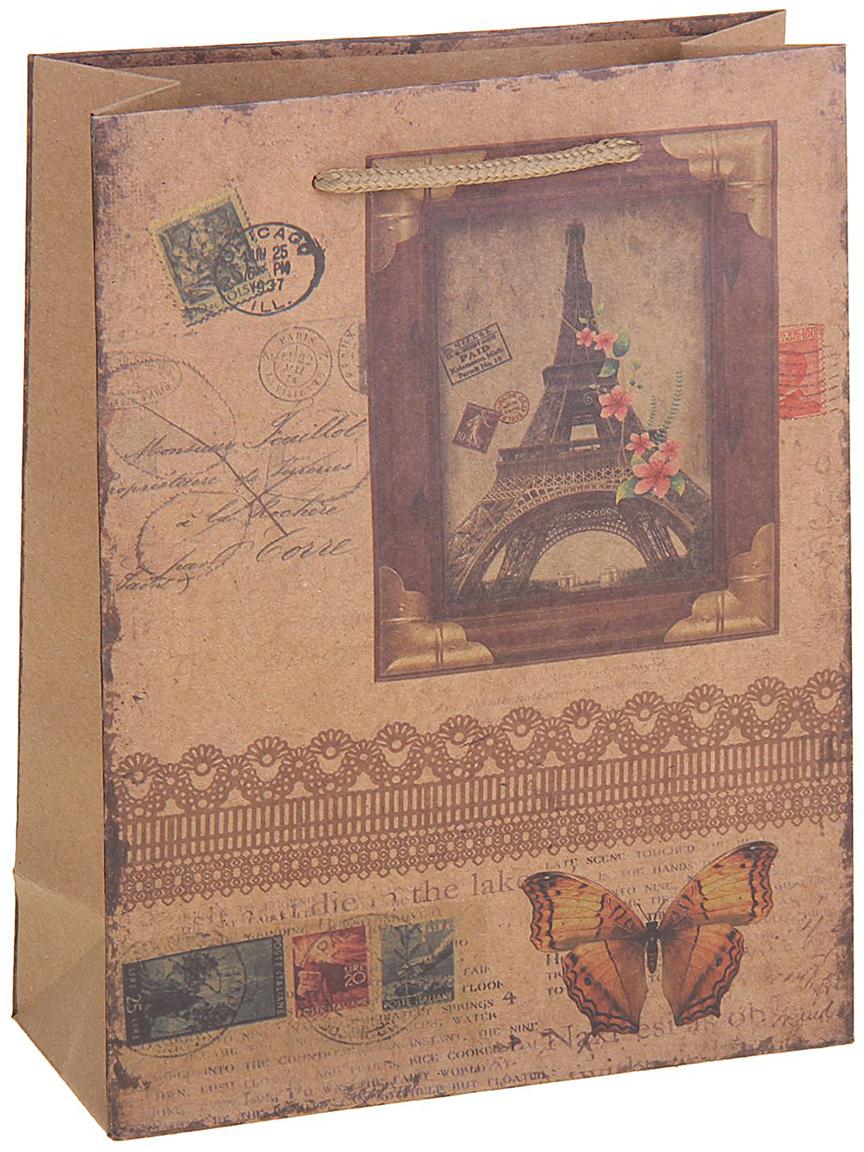 Пакет подарочный Париж, цвет: коричневый, 23 х 8,5 х 32 см. 12584431258443Любой подарок начинается с упаковки. Что может быть трогательнее и волшебнее, чем ритуал разворачивания полученного презента. И именно оригинальная, со вкусом выбранная упаковка выделит ваш подарок из массы других. Она продемонстрирует самые теплые чувства к виновнику торжества и создаст сказочную атмосферу праздника. Пакет-крафт Париж - это то, что вы искали.