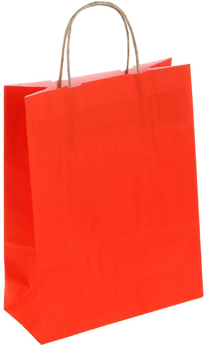 Пакет подарочный Радуга, цвет: красный, 25 х 11 х 32 см. 12715411271541Крафт-пакет влагоустойчив, с хорошей воздухопроницаемостью, отменно переносит высокую температуру и может использоваться не один раз. Имеет крепкое дно и крученые ручки. Изготовлен из крафт-бумаги – экологически чистого материала. Практичность в использовании и разумная стоимость – все это характеризует удобную и абсолютно безопасную в применении упаковку. Материал очень податлив, а работать с ним одно удовольствие: можно нанести любой рисунок, рекламу, поиграть с расцветкой или сделать яркий принт. Фирмы, упаковывающие свою продукцию таким образом, демонстрируют осведомленность в вопросах экологии, качестве выпускаемых изделий и заботу о ее потребителях.