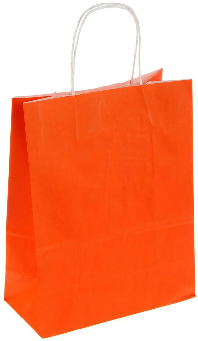 Пакет подарочный Радуга, цвет: оранжевый, 25 х 11 х 32 см. 12715421271542Крафт-пакет влагоустойчив, с хорошей воздухопроницаемостью, отменно переносит высокую температуру и может использоваться неоднократно. Имеет крепкое дно и крученые ручки. Изготовлен из крафт-бумаги – экологически чистого материала. Практичность в использовании и разумная стоимость – все это характеризует удобную и абсолютно безопасную в применении упаковку. Материал очень податлив, а работать с ним одно удовольствие: можно нанести любой рисунок, рекламу, поиграть с расцветкой или сделать яркий принт. Фирмы, упаковывающие свою продукцию таким образом, демонстрируют осведомленность в вопросах экологии, качестве выпускаемых изделий и заботу о ее потребителях.