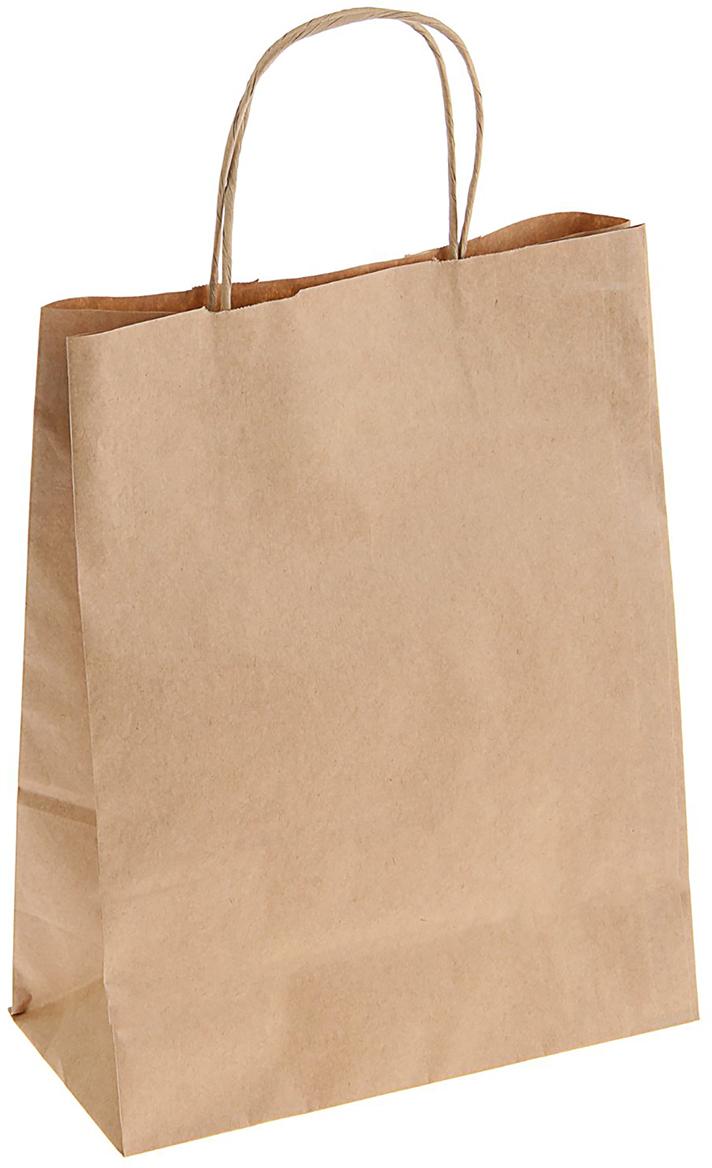 Пакет подарочный, цвет: коричневый, 25 х 11 х 32 см. 13128521312852Крафт-пакет влагоустойчив, с хорошей воздухопроницаемостью, отменно переносит высокую температуру и может использоваться не один раз. Имеет крепкое дно и крученые ручки. Изготовлен из крафт-бумаги – экологически чистого материала. Практичность в использовании и разумная стоимость – все это характеризует удобную и абсолютно безопасную в применении упаковку. Материал очень податлив, а работать с ним одно удовольствие: можно нанести любой рисунок, рекламу, поиграть с расцветкой или сделать яркий принт. Фирмы, упаковывающие свою продукцию таким образом, демонстрируют осведомленность в вопросах экологии, качестве выпускаемых изделий и заботу о ее потребителях.