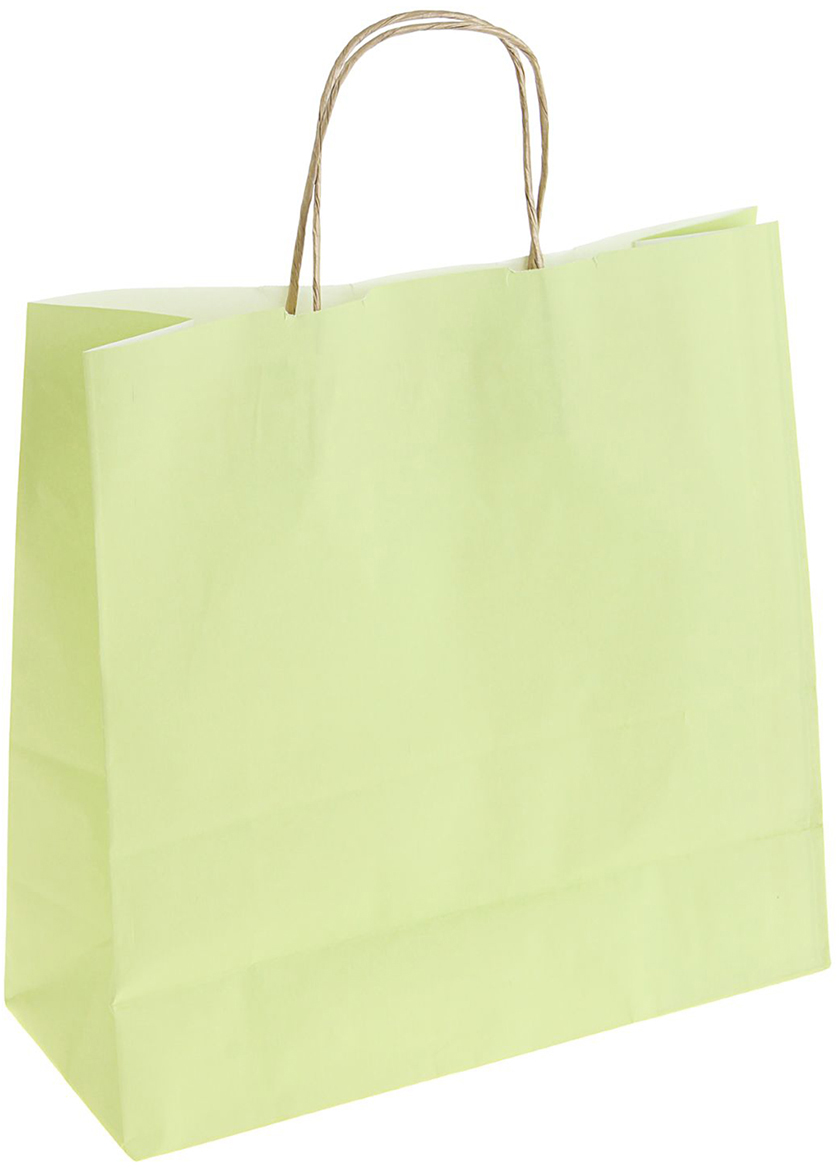 Пакет подарочный Радуга, цвет: салатовый, 32 х 12 х 32 см. 13128551312855Крафт-пакет влагоустойчив, с хорошей воздухопроницаемостью, отменно переносит высокую температуру и может использоваться не один раз. Имеет крепкое дно и крученые ручки. Изготовлен из крафт-бумаги – экологически чистого материала. Практичность в использовании и разумная стоимость – все это характеризует удобную и абсолютно безопасную в применении упаковку. Материал очень податлив, а работать с ним одно удовольствие: можно нанести любой рисунок, рекламу, поиграть с расцветкой или сделать яркий принт. Фирмы, упаковывающие свою продукцию таким образом, демонстрируют осведомленность в вопросах экологии, качестве выпускаемых изделий и заботу о ее потребителях.