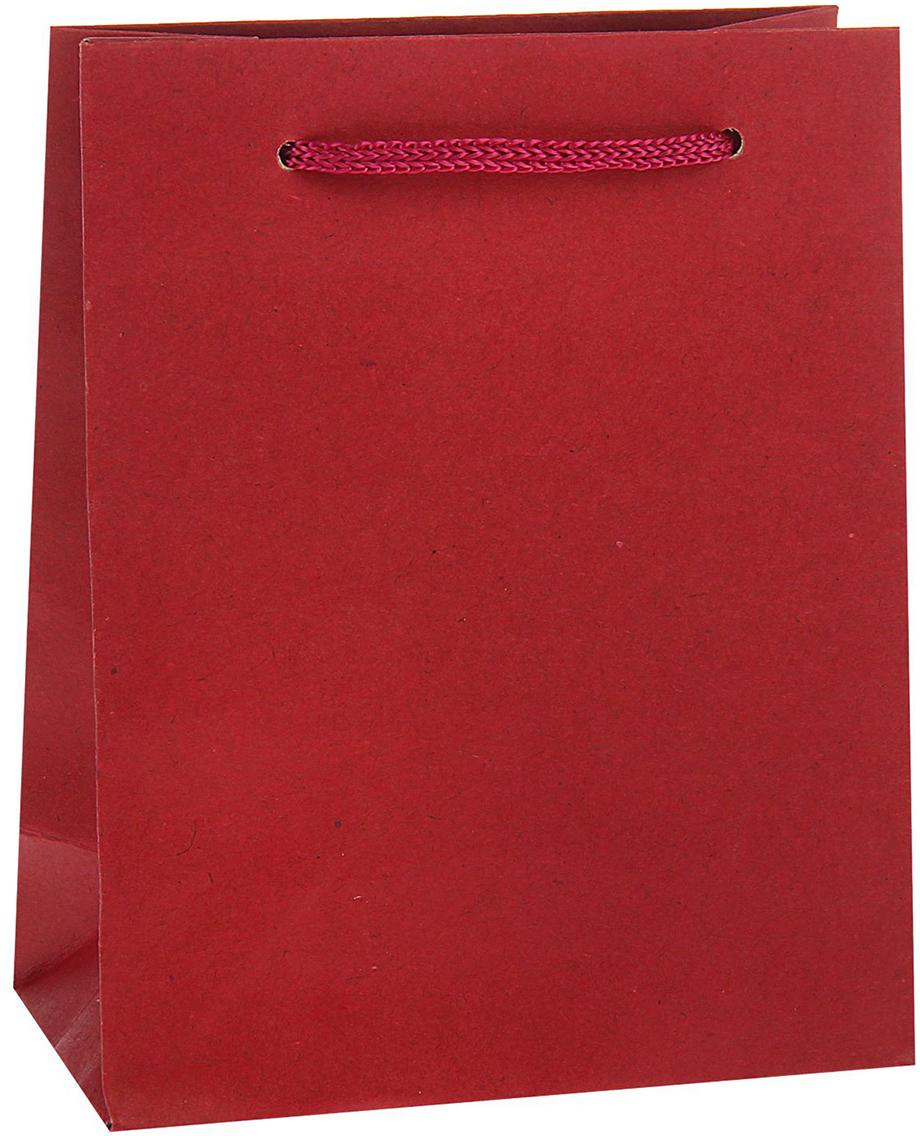 Пакет подарочный, цвет: красный, 12 х 15,5 х 5,5 см. 13988771398877Любой подарок начинается с упаковки. Что может быть трогательнее и волшебнее, чем ритуал разворачивания полученного презента. И именно оригинальная, со вкусом выбранная упаковка выделит ваш подарок из массы других. Она продемонстрирует самые теплые чувства к виновнику торжества и создаст сказочную атмосферу праздника - это то, что вы искали.