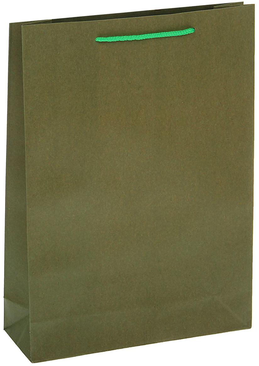 Пакет подарочный, цвет: зеленый, 19 х 25 х 8 см. 13988941398894Любой подарок начинается с упаковки. Что может быть трогательнее и волшебнее, чем ритуал разворачивания полученного презента. И именно оригинальная, со вкусом выбранная упаковка выделит ваш подарок из массы других. Она продемонстрирует самые теплые чувства к виновнику торжества и создаст сказочную атмосферу праздника - это то, что вы искали.