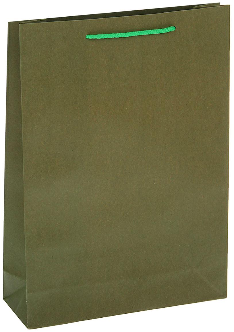Пакет подарочный, цвет: зеленый, 31,5 х 41,5 х 9,5 см. 13989121398912Любой подарок начинается с упаковки. Что может быть трогательнее и волшебнее, чем ритуал разворачивания полученного презента. И именно оригинальная, со вкусом выбранная упаковка выделит ваш подарок из массы других. Она продемонстрирует самые теплые чувства к виновнику торжества и создаст сказочную атмосферу праздника - это то, что вы искали.