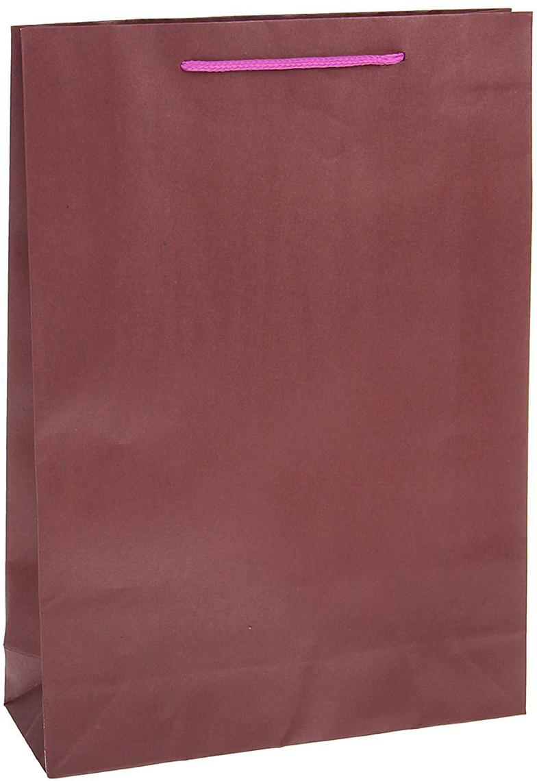 Пакет подарочный, цвет: сиреневый, 31,5 х 9,5 х 42 см. 13989141398914Любой подарок начинается с упаковки. Что может быть трогательнее и волшебнее, чем ритуал разворачивания полученного презента. И именно оригинальная, со вкусом выбранная упаковка выделит ваш подарок из массы других. Она продемонстрирует самые теплые чувства к виновнику торжества и создаст сказочную атмосферу праздника - это то, что вы искали.