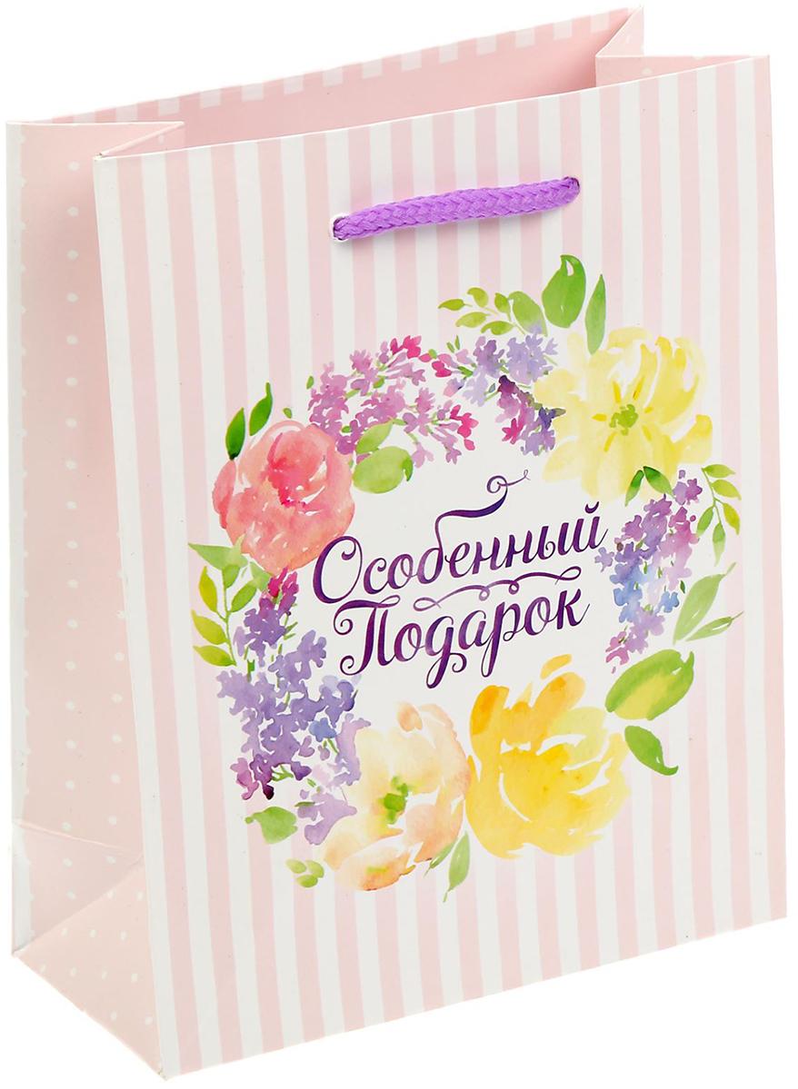 Пакет подарочный Дарите Счастье Особенный подарок, цвет: мультиколор, 12 х 15 х 5,5 см. 14030691403069Любой подарок начинается с упаковки. Что может быть трогательнее и волшебнее, чем ритуал разворачивания полученного презента. И именно оригинальная, со вкусом выбранная упаковка выделит ваш подарок из массы других. Она продемонстрирует самые теплые чувства к виновнику торжества и создаст сказочную атмосферу праздника - это то, что вы искали.